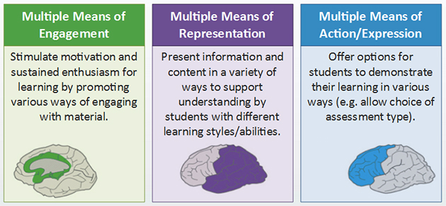 Image showing the 3 core principles of UDL: Multiple Means of Engagement, Multiple Means of Representation and Multiple Means of Action and Expression